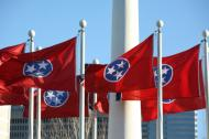 Statehood day Tennessee flag