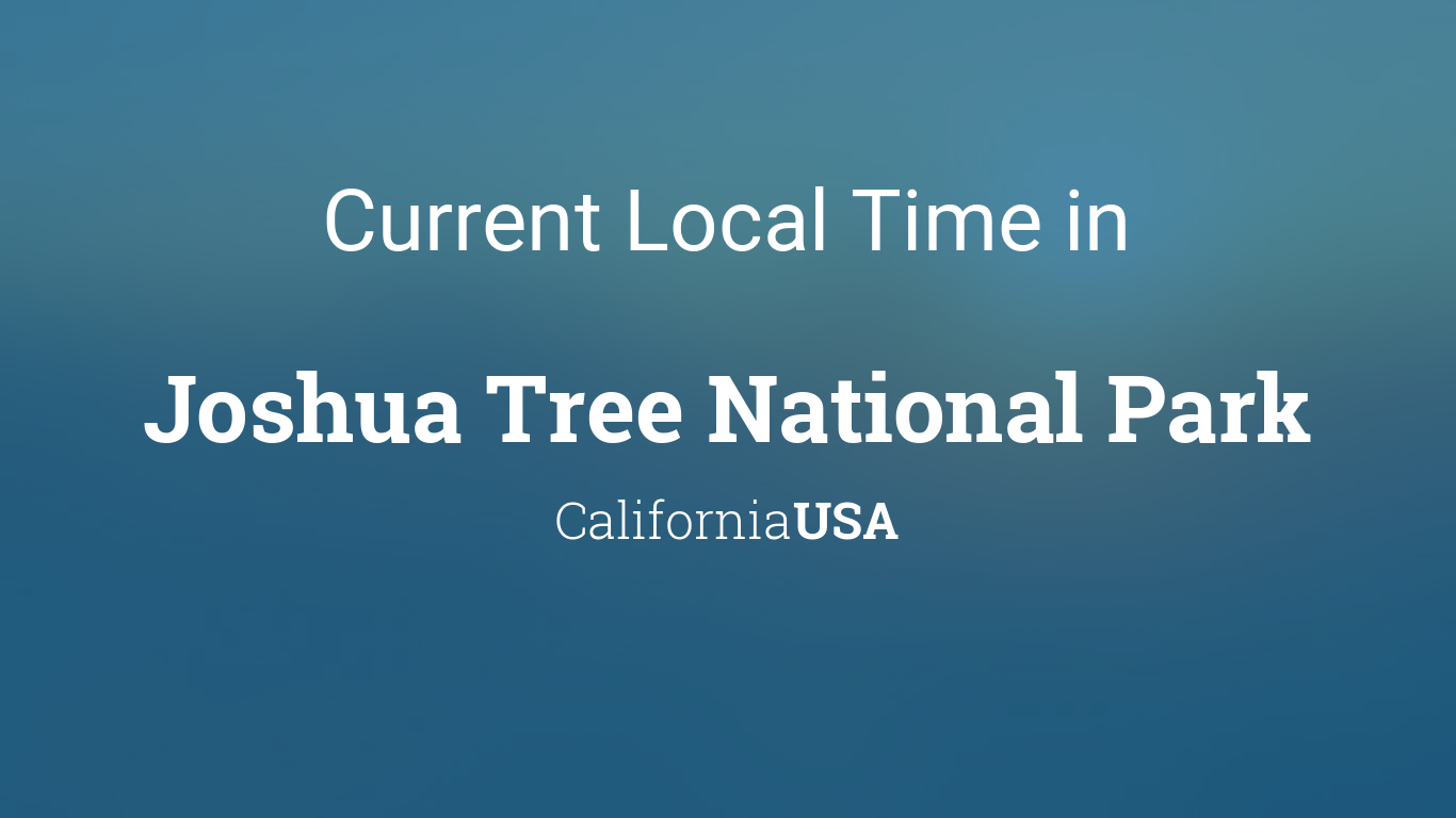 Current Local Time In Joshua Tree National Park California Usa