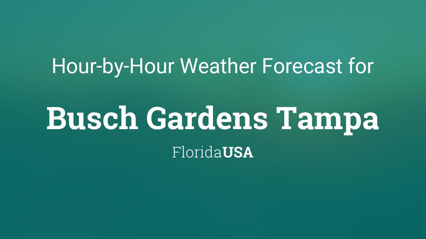 Hourly Forecast For Busch Gardens Tampa Florida Usa